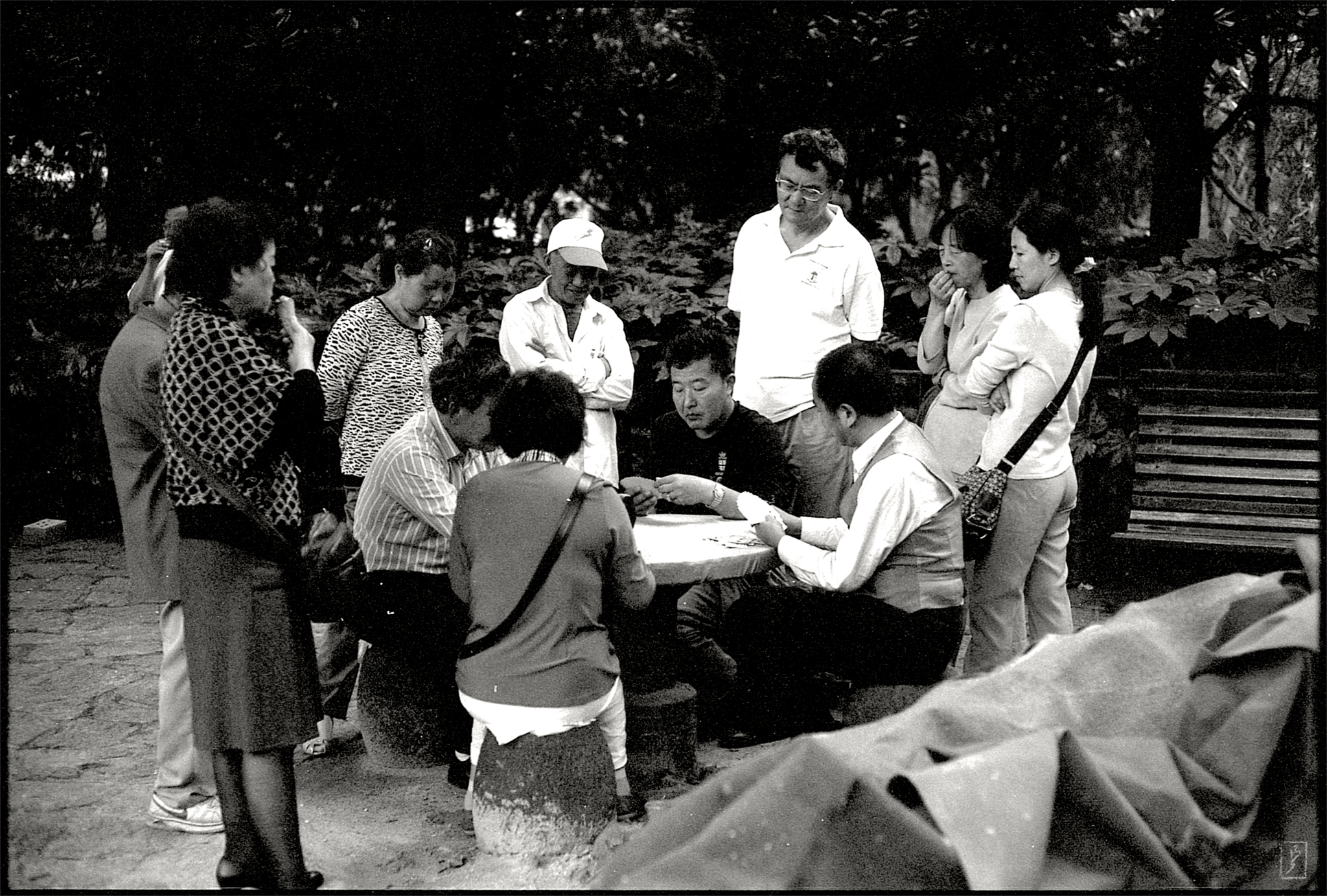 Lu Xun park (鲁迅公园): People watching others play cards.