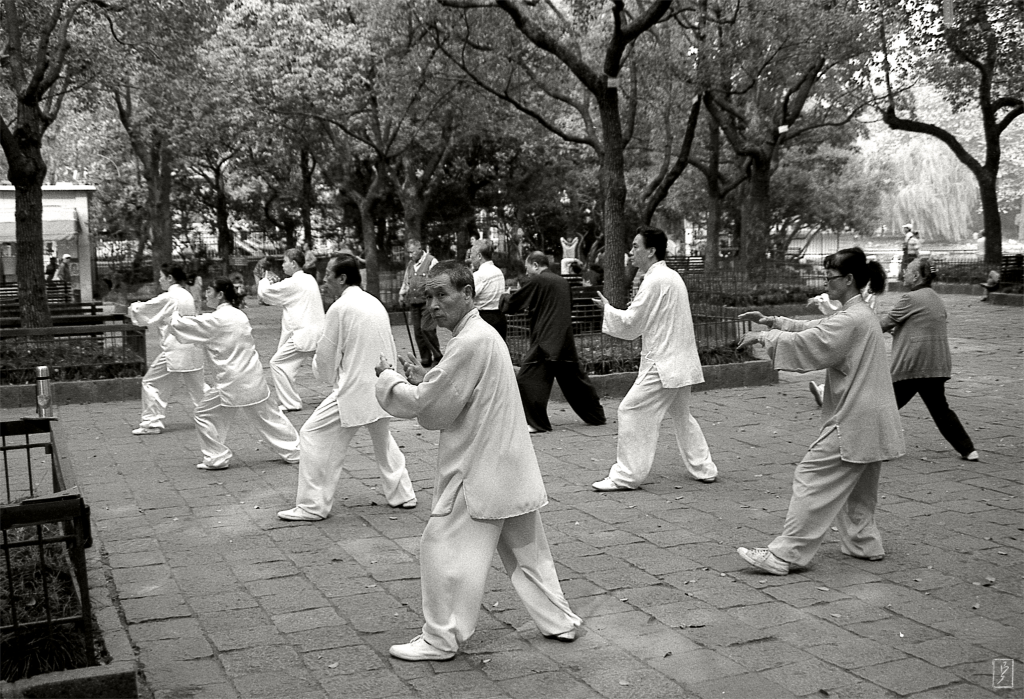 Lu Xun park (鲁迅公园): Taiji group practice.