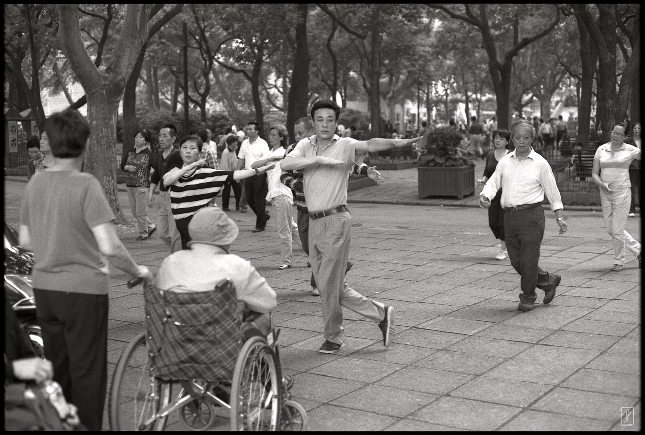 Lu Xun park (鲁迅公园): Line dance.