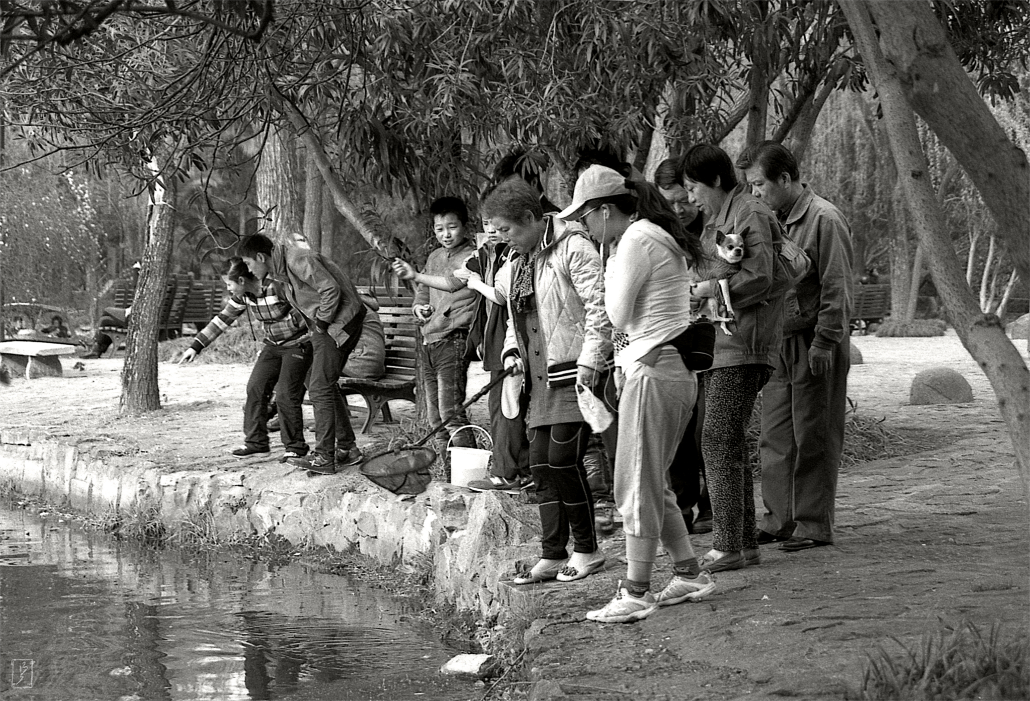 Lu Xun park (鲁迅公园): Visitors of the park discovered something in the water.